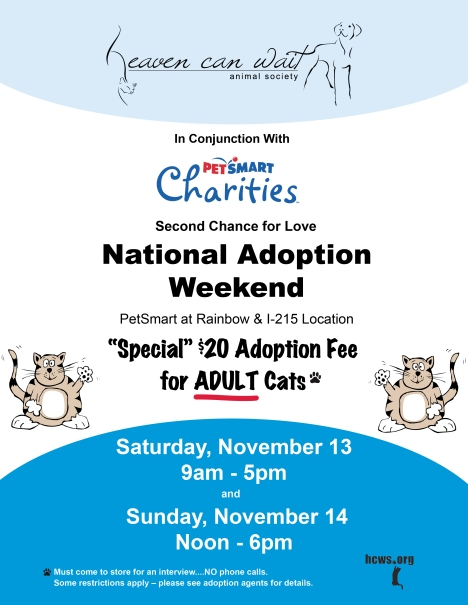 Petsmart Cat Adoption Dates