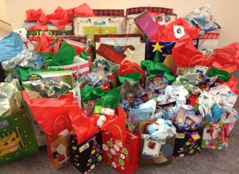 Gifts donated for Heaven Can Wait cats.