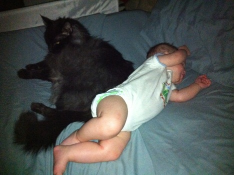 Patience and understanding brought baby Joseph and Miguel, the cat, together.